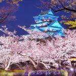 【大阪 スタンダード】一般的な旅行に最適のミドルクラスホテル