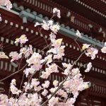 【台北 日本語】日本の環境に近い日系ホテルと日本語が通じるホテル